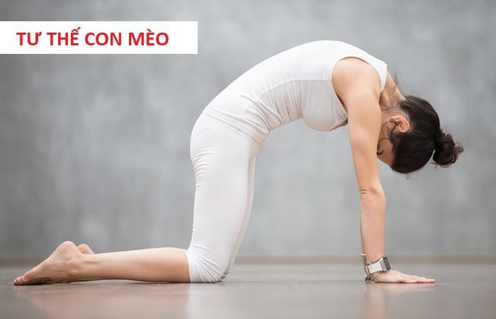 Bài tập yoga tư thế con mèo cho người bệnh gai cột sống